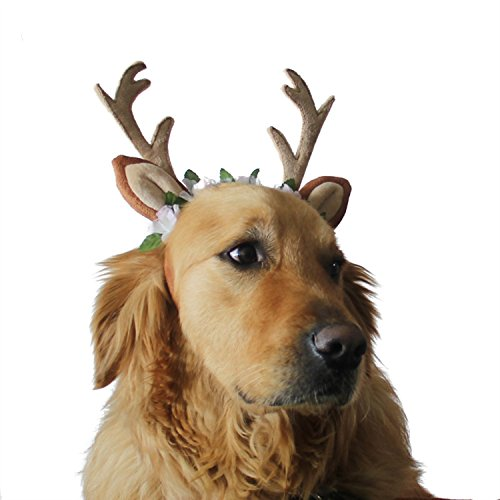 Costumes Dog Holiday (Dog Headband, Halloween Costumes Holiday Christmas Antlers for Dogs - Wearable Dog Accessories Large By)