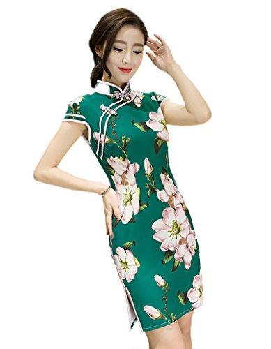 Fasbys Chinese Traditional Qipao Dress Women's Mandarin Collar Printing Cheong-sam (L)