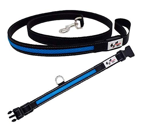 Ruff Life LED Dog Leash and Light Up Collar Premium Value Pack (Blue)