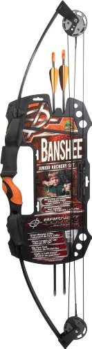 Lil Banshee Barnett Compound (Barnett Banshee Junior Archery Set)