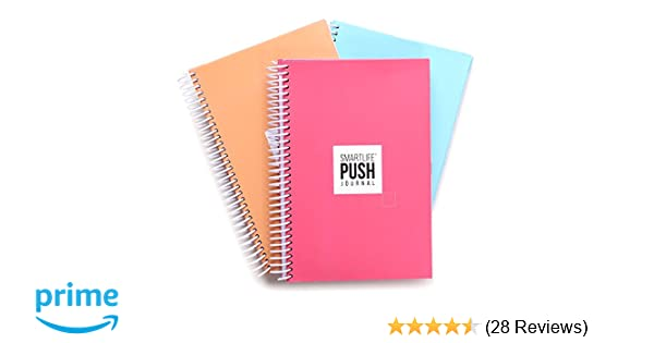A 90-Day, All-in-One Life Planner/Goal Setter/Notebook/Organizer/Scheduler,  3 Colors/Pack, Each Journal: 160 Pages-Quality Paper, 0 9 lbs - Light