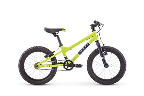 Raleigh Bikes Rowdy 16 Kids Bike for Boys Youth 3-6 Years Old, Green (Best Kids Bikes 16)