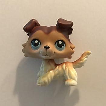 Amazon.com: Collie #58 (Brown, Blue Eyes) Littlest Pet