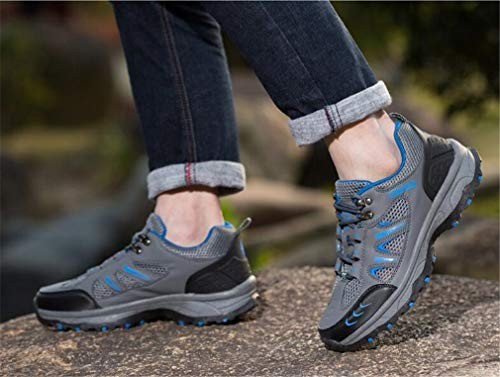 Schuhe Rutsch Verschleißfeste Bergsteigen Shock Männer Größe Wanderschuhe B Schuhe Absorber Anti Breathable Ein Wanderschuhe Mesh Outdoor Farbe Sneakers 40 Womens zf0R7w