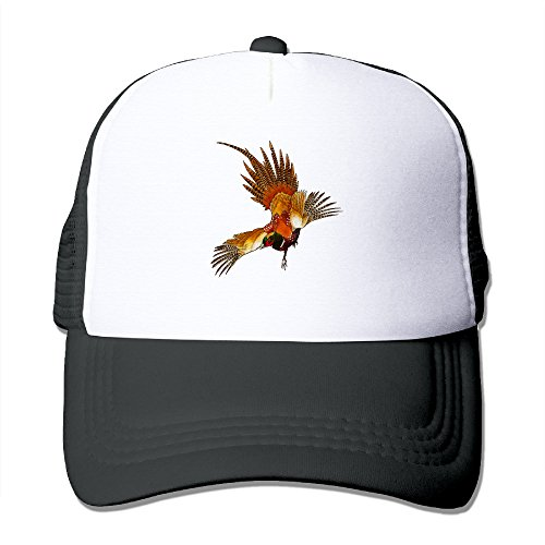 Pheasant Animals - 8