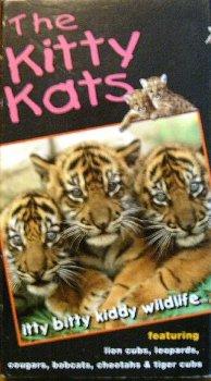 The Kitty Kats: Itty Bitty Kiddy Wildlife (Itty Kitty)