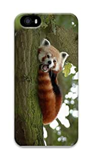 spec covers little red panda PC Case for iphone 5/5S