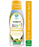 Premium Children's Liquid Multivitamin & Superfood -100% Daily Value of 14 Vitamins, 66
