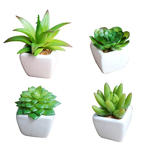 Set of 4 Small Artificial Succulent Plants in Mini Modern White Ceramic Planter Pots, Fake Plants for Home Decor Indoor