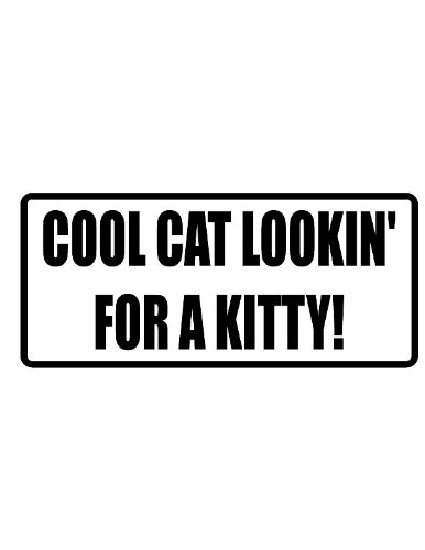 Qty Kitty - Any and All Graphics Cool cat Lookin' for a Kitty 3