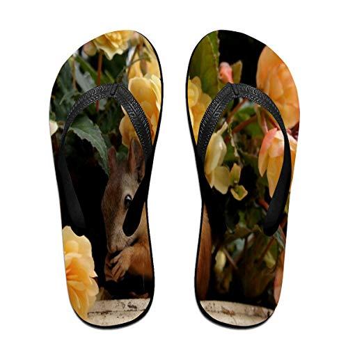 Cocoa trade Flip-Flops Squirrel Flowerportable Open Toe Slim Beach Slippers for Men's -