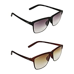 Black and Brown Sunglasses
