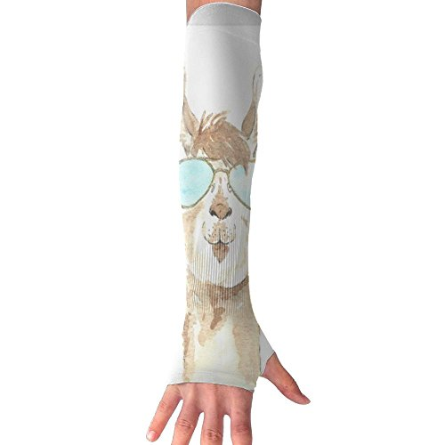 ZPENG Arm Sleeves Sunglasses Llama Women's Anti-uv Sun Protection Protection Hand Cover Fingerles - Ancient Sunglasses
