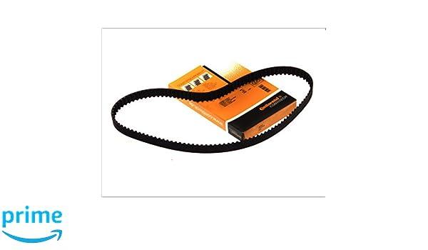 Continental Contitech ct583 correa de distribución: Amazon.es: Coche y moto