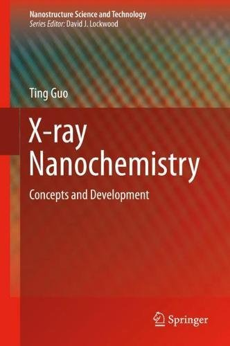 X-ray Nanochemistry: Concepts and Development (Nanostructure Science and Technology)