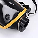 Electric-Supplied Air Fed Full Face Gas Mask