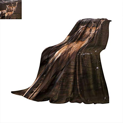 (Angoueleven Fleece Blanket Throw hinds Throw Blanket 60