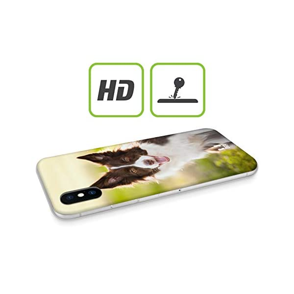 Head Case Designs Brown Border Collie in Summer Popular Dog Breeds Soft Gel Case Compatible for iPhone 11 Pro 2