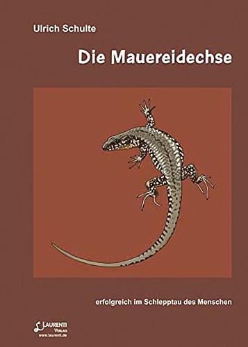 Die Mauereidechse: Erfolgreich im Schlepptau des Menschen (Zeitschrift für Feldherpetologie - Beihefte)