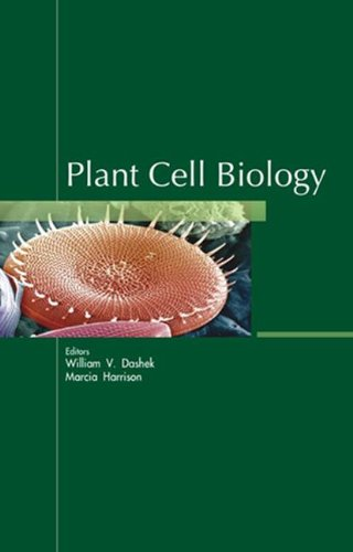 Plant Cell Biology
