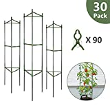 GROWNEER 30-Pack Plant Cages Assembled Tomato Garden Cages Stakes Vegetable Trellis, w/ 90 Pcs Clips, for Vertical Climbing Plants