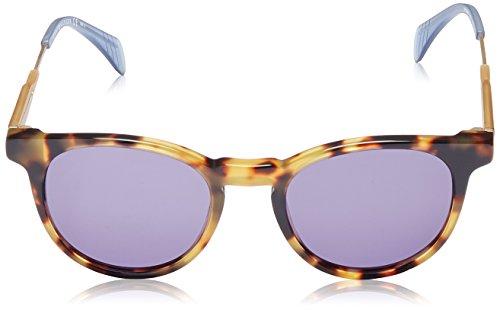 1350 Tommy TH Caramel Hilfiger S Gold Havana Sonnenbrille wprUtqxBp