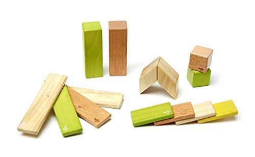 Magnets Jungle - 14 Piece Tegu Magnetic Wooden Block Set, Jungle