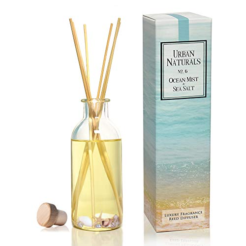 Urban Naturals Ocean Mist & Sea Salt Reed Diffuser | Decorated with Seashells! Beautiful Beach Themed Home Decor | Home Gift Idea
