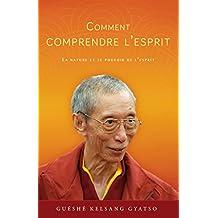 Comment Comprendre l'esprit: La nature et le pouvoir de l'esprit (French Edition)
