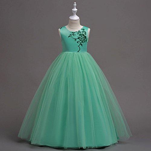 Amazon.com: Zhuhaitf Chinese Style Girls Embroidered Princess Dress Party Sleeveless Dresses: Clothing