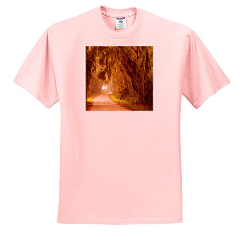Price comparison product image 3dRose Danita Delimont - Roads - Moss Draped Trees Along Laurel Hill Drive, Savannah NWR, Georgia - T-Shirts - Youth Light-Pink-T-Shirt XS(2-4) (TS_259207_43)