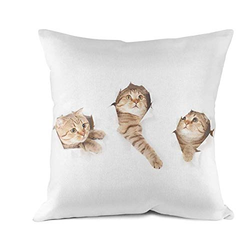 DDBBYLE Soft Cushion Cover Throw Pillow Covers Cats in Wallpaper Hole Decorative Pillow Cases Pillowcases Cotton Square Decoration Pillow Protectors Standard Size 18 X 18 -