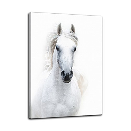 AMEMNY Modern White Horse Canvas Paintings on Canvas Contemporary Wall Art Giclee Framed Artwork HD Printed Picture to Photo Decor for Living Room(24''Wx36''H) ()