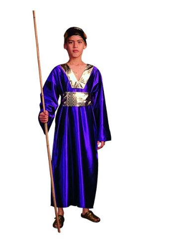 Purple Wiseman Child Costumes (Wiseman (Purple) - Large Child Costume)
