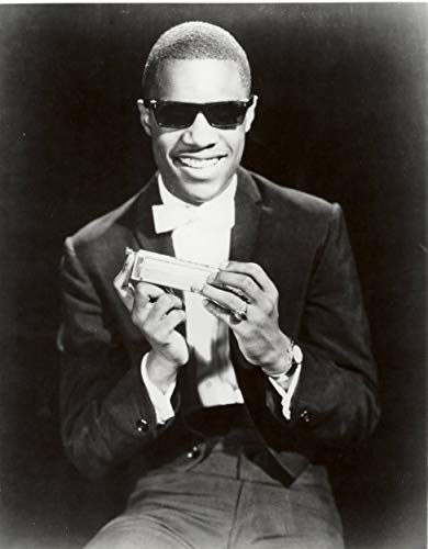 Home Comforts Laminated Poster Stevie Wonder Poster Harmonica Rock Star Soul Blues RNB Music Musician Posters Vivid Imagery Poster Print 11 x 17