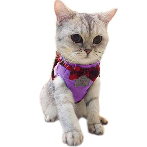 (Fashion Pet Cat Dog Vest Harness Traction KitSolid 3 Color Cat Supplies Cat Collars Leads,Purple,S )