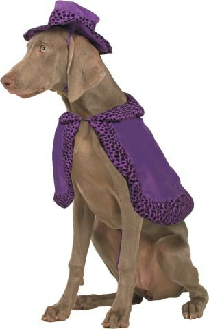 Pet Friendzy Pimp Suit Dog Costume for Medium Dogs