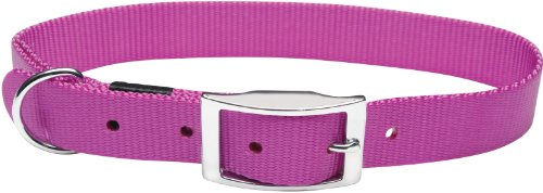 Nylon Double Ply Dog Collar (Dogit Nylon Double Ply Dog Collar with Buckle, X-Large, 28-Inch, Purple)