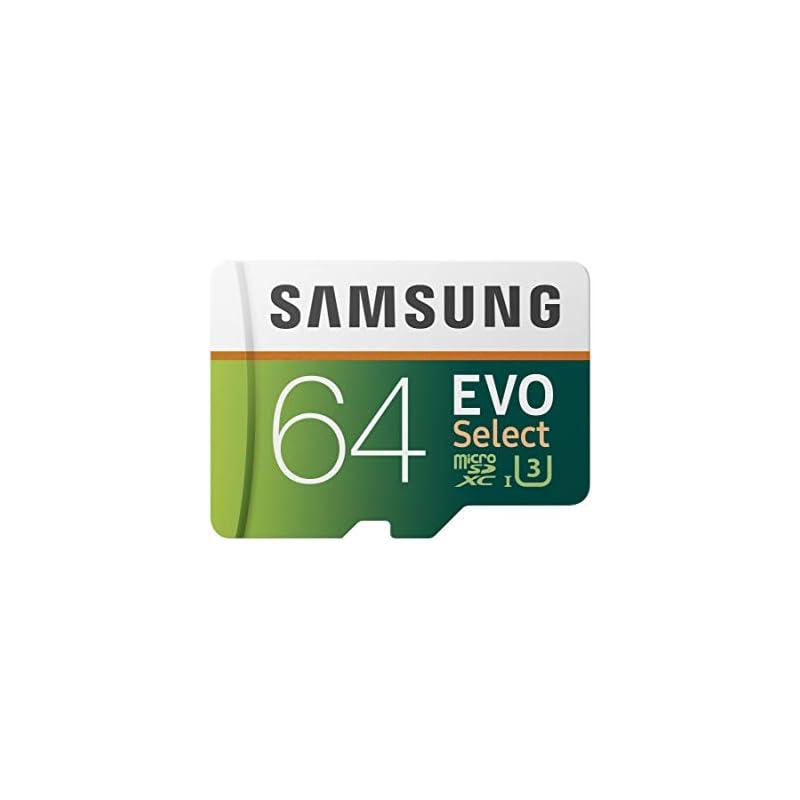Samsung 64GB 100MB/s (U3) MicroSD EVO Se