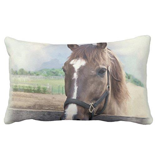 Halter Pillow (Zazzle Brown Horse with Halter Outdoor Pillow 13