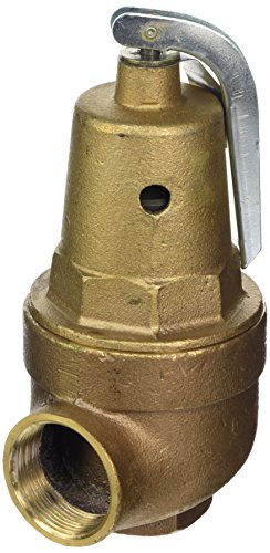 Pentair A0000300 75-PSI Pressure Relief Valve Replacement...