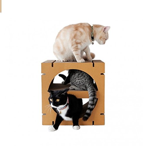 [Sansukjai Cat Scratching HOME Semi-Circle Shape Eco Friendly 30 x 40 x 40 cm] (Homemade Character Costumes Ideas)