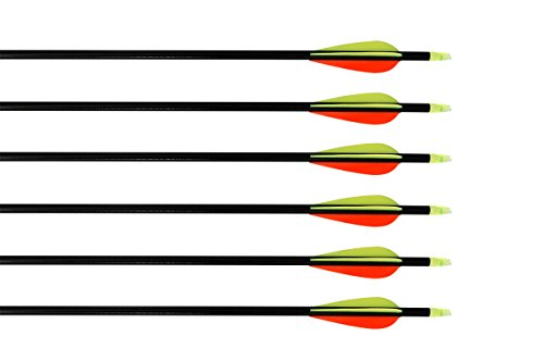 Huntingdoor Nock and Fletched Fiberglass Arrows with Screw-in Field Point for Recurve Bow or Compound Bow