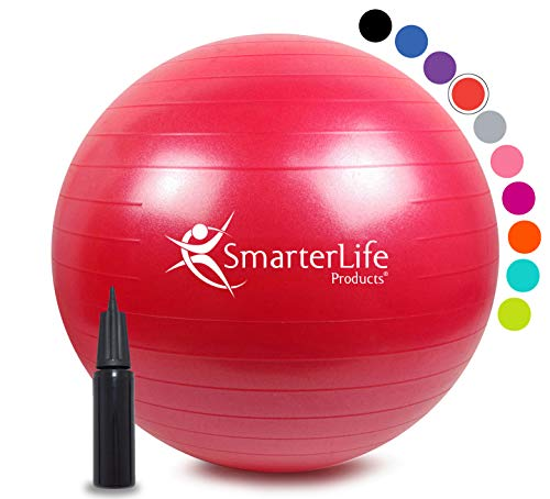 SmarterLife Exercise Ball for