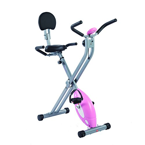 Sunny Health & Fitness Magnetic Folding Recumbent Bike Exercise Bike, 220lb Capacity - SF-RB1117