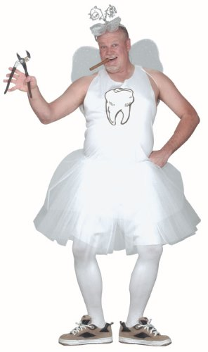 Tooth Fairy Costume Adult