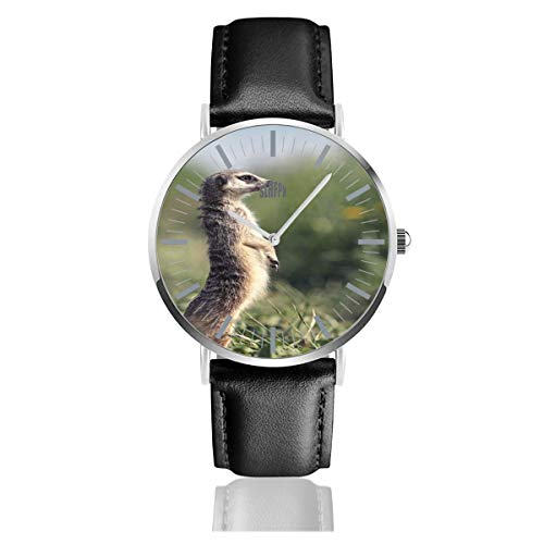 Watch Meerkat Stand On Legs in Grass Unique Wrist Watches Quartz Stainless Steel and PU Leather for Unisex