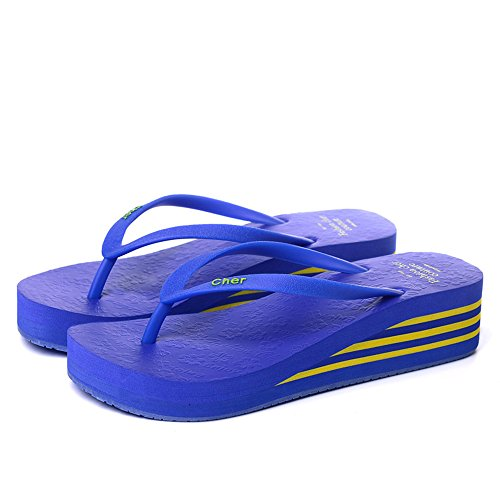 Slippers HAIZHEN Women shoes Multi-colored Summer Sandals Women's Plastic Anti-skid Black, Blue-1, Blue-2, Brown, Pink, Red, Yellow for Women (Color : Blue-2, Size : EU38/UK5.5/CN38) Blue-2