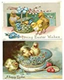 Vintage Lot of 2 Easter Chicks and Flowers Postcards postmarked 1909,1911 #18196