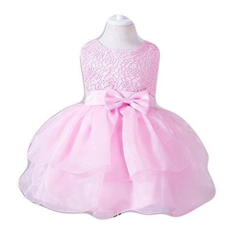Baby Flower Girl Sleeveless Lace Special Occasion Dress Ruffles Embroider Wedding Birthday Layered Cake Dresses Blush Pink Size 18-24 Months Tulle Tutu Ball Gown for Infant Party (Pink XL)